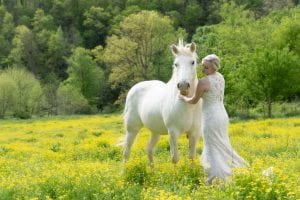Wedding photography at Honeysuckle Hills with horse